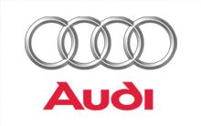 Sonali Gupta - Client (Audi)