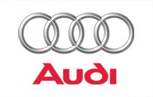Sonali Gupta - Client(Audi)
